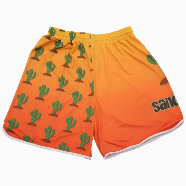 Pattern 2018 – Kaktus