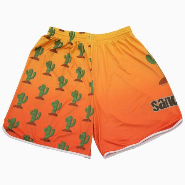 Pattern 2018 – Cactus